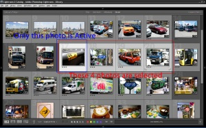 Lightroom Selection in Grid View