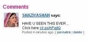 Another Spam Comment on Flickr