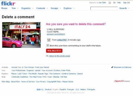 Flickr Spam Comment