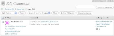 Wordpress Spam Comment